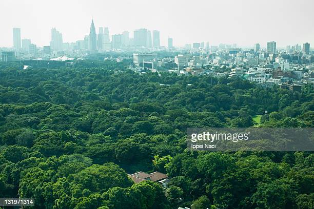 tokyo skyline from above in summer - lush stock pictures, royalty-free photos & images