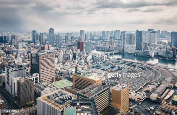 Tokyo Skyline on Beautiful Day