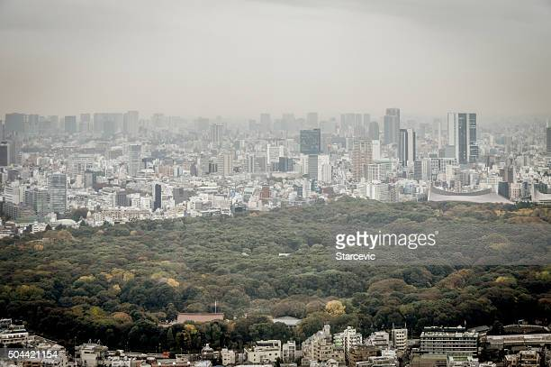 skyline von tokio - nishi shinjuku stock-fotos und bilder