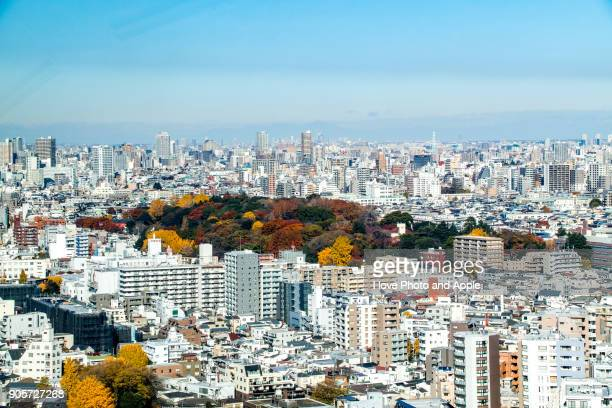 tokyo skyline - university of tokyo stock pictures, royalty-free photos & images