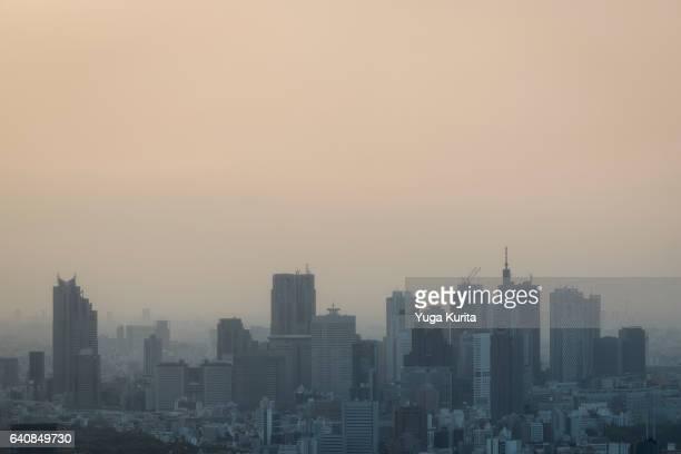 tokyo skyline with smog - 東京都庁舎 ストックフォトと画像