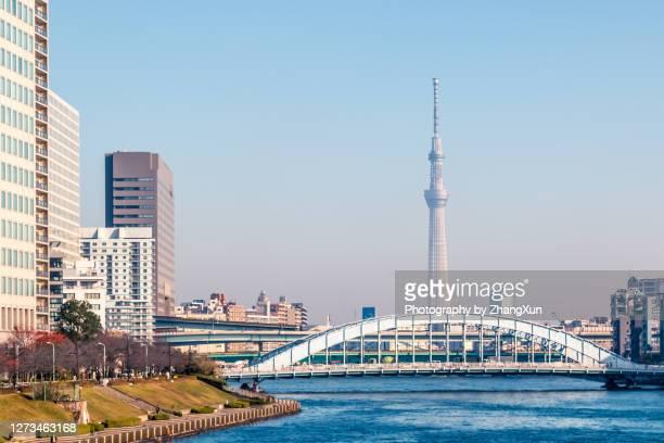 tokyo skyline with tokyo skytree and eitai bridge over sumida river. - 永代橋 ストックフォトと画像