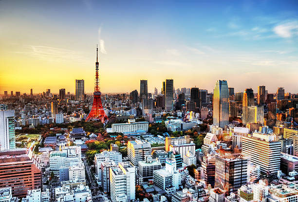 Tokyo Skyline With Tower At Sunset Wall Art