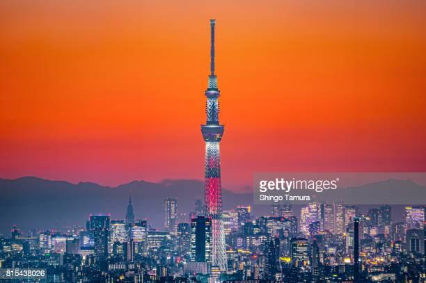 tokyo skytree in orange twilgiht sky - tóquio - fotografias e filmes do acervo