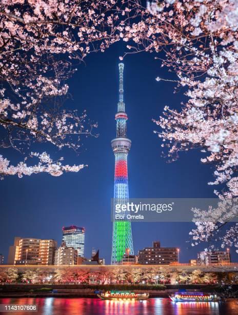 tokyo skytree tower sakura cherry blossom long exposure at night paralympic red blue green colors flag. japan - japão imagens e fotografias de stock