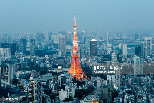 Tokyo Tower and city skyline at night, aerial view