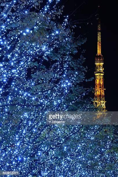 Tokyo Tower and Keyakizaka illumination