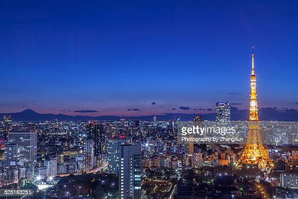 Tokyo Tower and Mount Fuji skyline at night