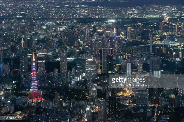 tokyo tower and tokyo bay in tokyo of japan aerial view from airplane - taro hama ストックフォトと画像