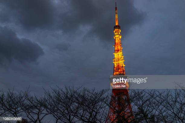 tokyo tower in winter - liyao xie stock pictures, royalty-free photos & images