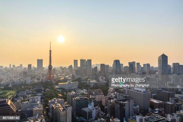 Tokyo Urban Skyline with tokyo tower, Japan at sunset.
