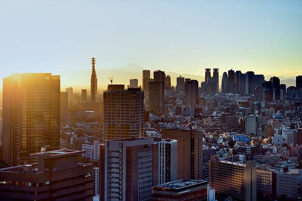 Tokyo View At Sunset Wall Art