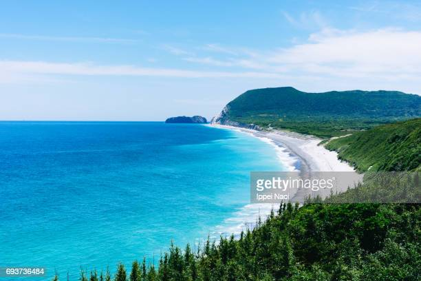 tokyo's surf island from above, niijima island - 生い茂る ストックフォトと画像