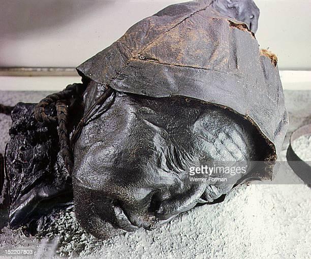 Tollund man victim of human sacrifice by ritual strangulation Denmark Viking Iron Age