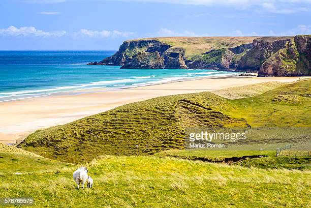 tolsta beach in the isle of lewis, outer hebrides. - natal brazil stock pictures, royalty-free photos & images