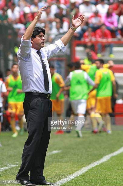 Toluca's coach Jose Cardozo gestures during their Mexican Clausura tournament football match against Tigres, at the Nemesio Diez stadium on May 10 in...