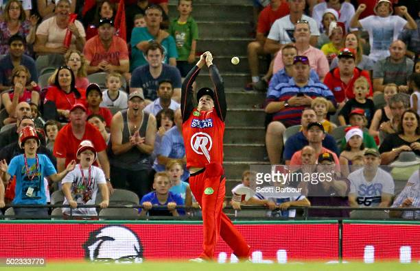 Tom Beaton of the Renegades drops a catch from Jordan Silk of the Sixers on the boundary during the Big Bash League match between the Melbourne...