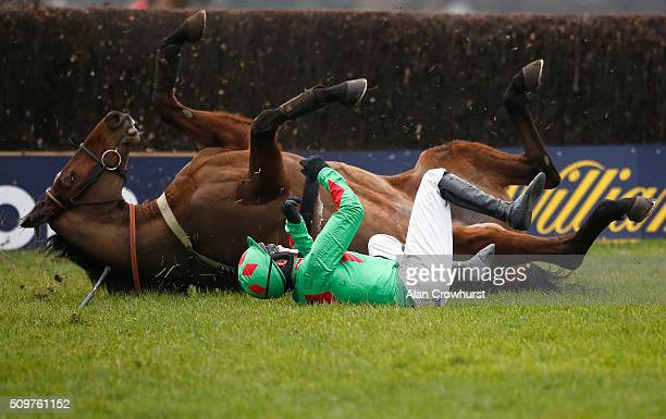 Tom Bellamy riding Devil To Pay fall at the last as both horse and jockey form similar shapes at Kempton Park racecourse on February 12 2016 in...