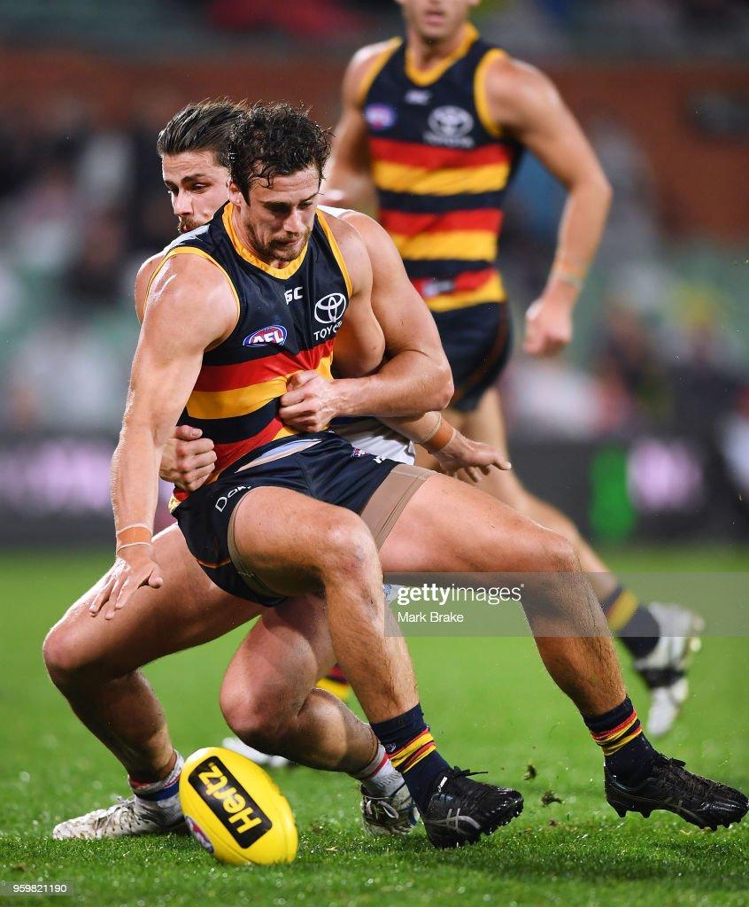AFL Rd 9 - Adelaide v Western Bulldogs