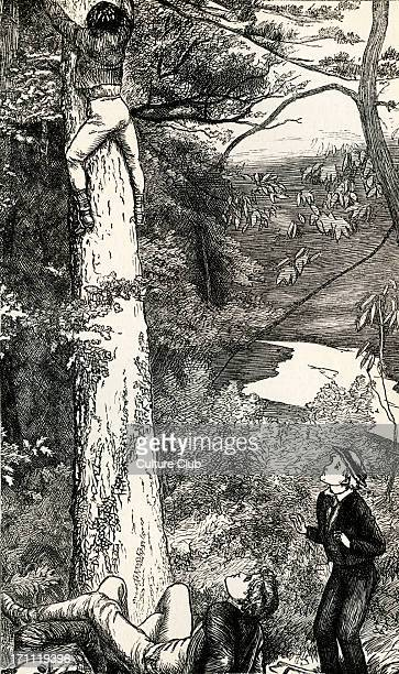 Tom Brown's SchoolDays by Thomas Hughes Tom Brown's SchoolDays by Thomas Hughes First published in 1857 Caption reads 'Climbing the firtree after the...