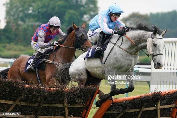Tom Buckley riding Point n Shoot challenge at the last to win The Happy Birthday Angela Savage 89 Today Handicap Hurdle at Fontwell Park Racecourse...