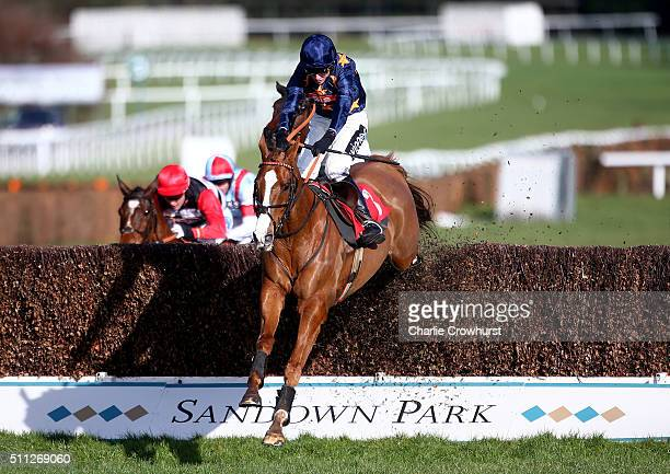Tom Cannon rides Fairy Rath to win The 'UBIQUE' Handicap Steeple Chase at Sandown Park on February 19 2016 in Esher England