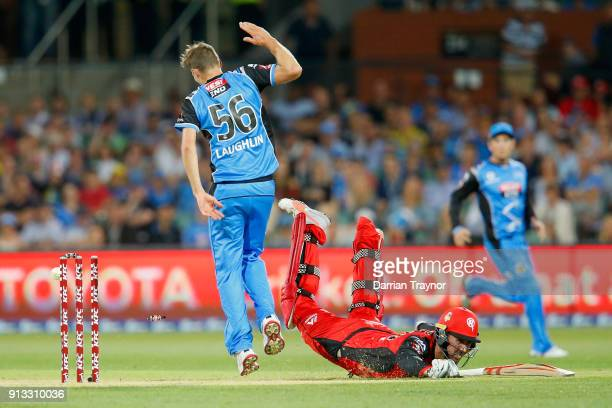 Tom Cooper of the Melbourne Renegades dives to beat a run out attempt during the Big Bash League match between the Adelaide Strikers and the...