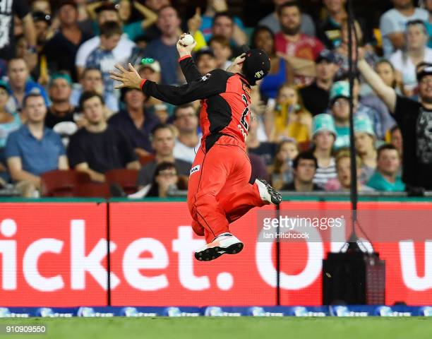 Tom Cooper of the Renegades takes a catch to dismiss Matt Renshaw of the Heat during the Big Bash League match between the Brisbane Heat and the...