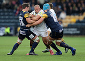 worcester england tom cruse wasps is