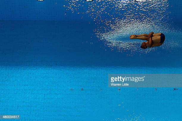 Tom Daley of Great Britain dives in the Men's 10m Platform final during day three of the FINA/NVC Diving World Series 2014 at the Hamdan Sports...