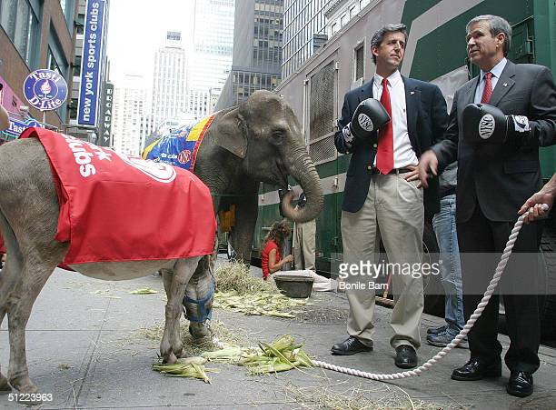 Tom Dicesare a John Kerry lookalike and Brent Mendenhall a US President George W Bush lookalike stand next to an eightyearold donkey and a 28yearold...