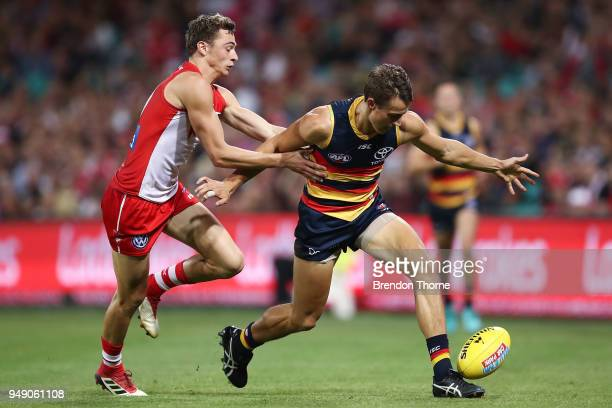 Tom Doedee of the Crows contests the ball Will Hayward of the Swans during the round five AFL match between the Sydney Swans and the Adelaide Crows...