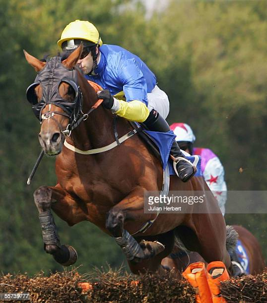 Tom Doyle and Snow Tempest clear the sixth flight before landing The Redbank Long Paddock Wines Juvenile Novices Hurdle Race run at Fontwell...