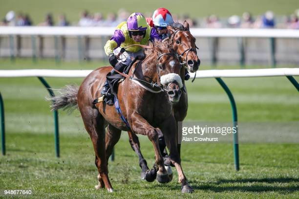 Tom Eaves riding Brando win The Connaught Access Flooring Abernant Stakes at Newmarket racecourse on April 19 2018 in Newmarket England
