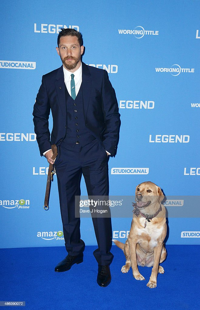 Tom Hardy and his dog Woody attend the UK Premiere of 'Legend' at Odeon Leicester Square on September 3, 2015 in London, England.