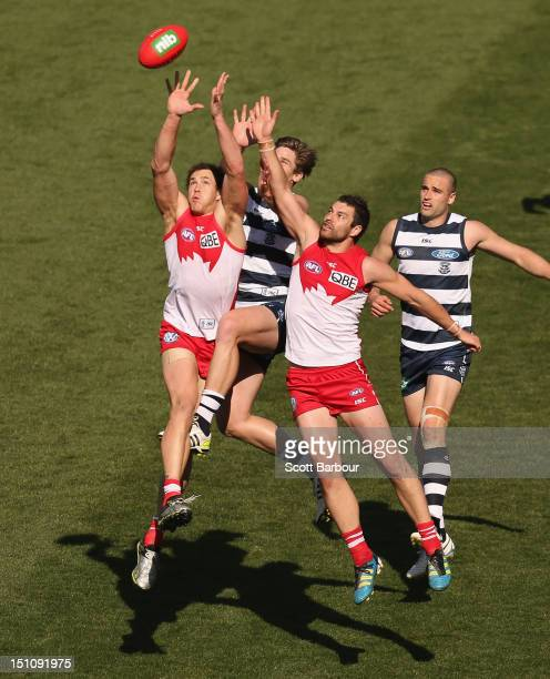 Tom Hawkins of the Cats and Shane Mumford of the Swans compete for the ball during the round 23 AFL match between the Geelong Cats and the Sydney...