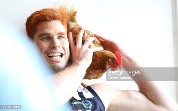 Tom Hawkins of the Cats arrives with a rooster at the Geelong Cats post AFL season celebrations at the Cremorne Hotel on September 25, 2019 in...