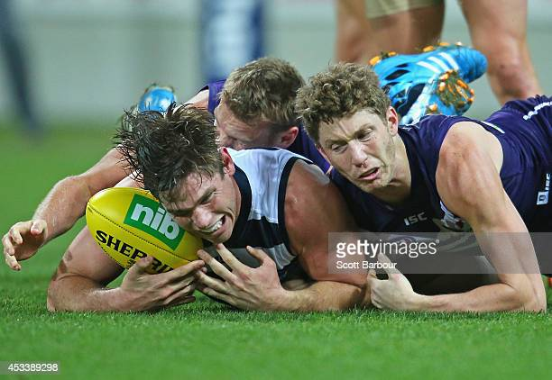 Tom Hawkins of the Cats competes for the ball during the round 20 AFL match between the Geelong Cats and the Fremantle Dockers at Skilled Stadium on...
