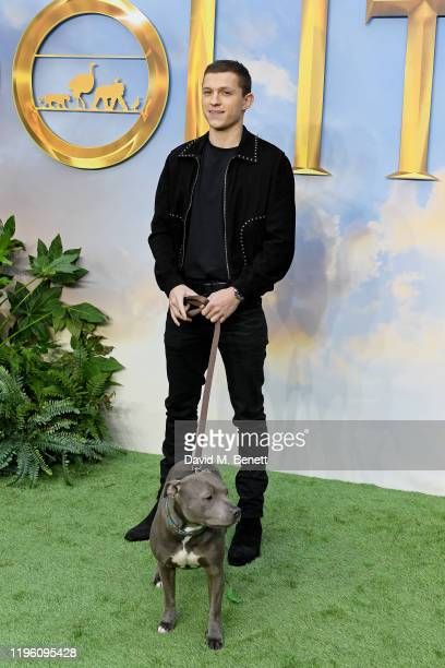 """Tom Holland attends a special screening of """"Dolittle"""" at Cineworld Leicester Square on January 25, 2020 in London, England."""