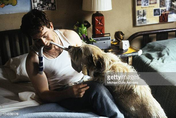 Tom Hulce playing with dog in a scene from the film 'Dominick And Eugene' 1988