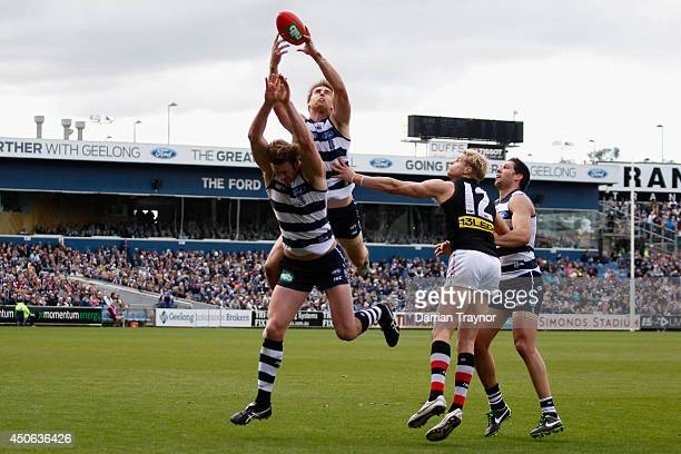 Tom Lonergan of the Cats marks the ball during the round 13 AFL match between the Geelong Cats and the St Kilda Saints at Skilled Stadium on June 15...