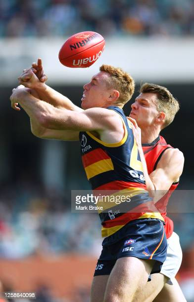 Tom Lynch of the Crows spoiled by Jordan Riley of the Bombers during the round 8 AFL match between the Adelaide Crows and the Essendon Bombers at the...