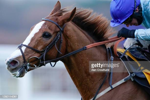 Tom O'Brien riding Not So Sleepy clear the last to win The Betfair Exchange Trophy at Ascot Racecourse on December 19, 2020 in Ascot, England. Owners...