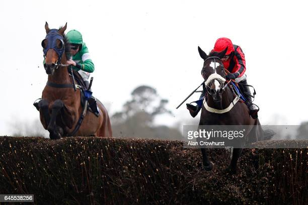 Tom O'Brien riding Wizards Bridge clear the last to win The totequadpot Handicap Steeple Chase from The Italian Yob at Fontwell Park on February 26...