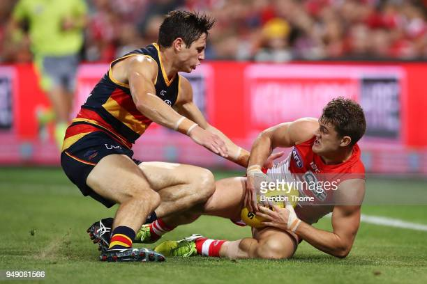 Tom Papley of the Swans contests the ball Jake Kelly of the Crows during the round five AFL match between the Sydney Swans and the Adelaide Crows at...
