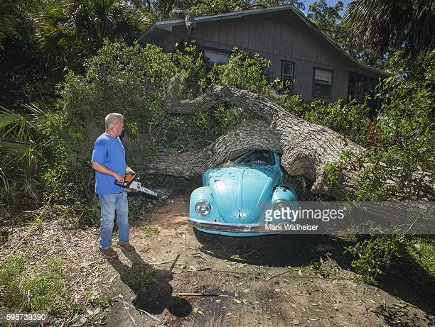 Tom Reams looks over a tree on top of his 15 year old daughter's Volkswagen Beetle and house cause by the wind and storm surge from Hurricane Hermine...