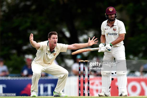 Tom Rogers of Tasmania appeals unsuccessfully against Joe Burns of Queensland for lbw during day three of the Sheffield Shield Final match between...