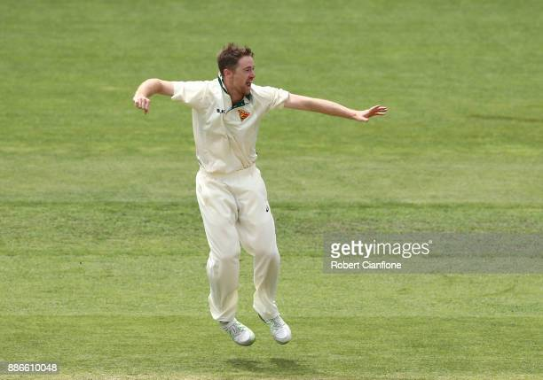 Tom Rogers of Tasmania celebrates taking the wicket of Trent Copeland of NSW during day four of the Sheffield Shield match between New South Wales...