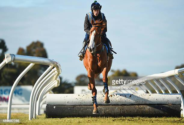 Tom Ryan riding Charmed Harmony over some jumps during a trackwork session at Caulfield Racecourse on September 25 2015 in Melbourne Australia The...