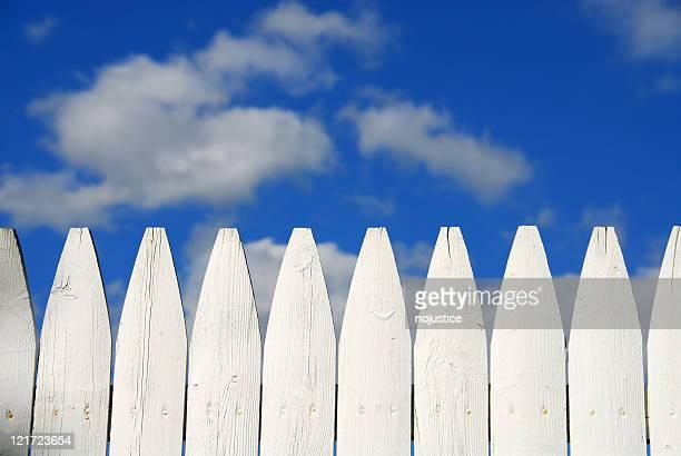 Tom Sawyers Fence